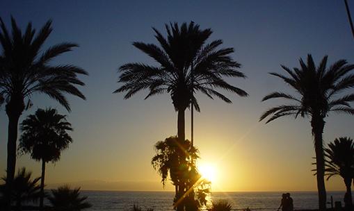 美国人沙滩 Playa de las Americas